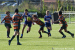 Cubs Bowl Poule A: RC Waterland - Rotterdamse RC