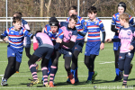 Cubs Plate Poule A, 2e fase: RC Waterland - RC The Pink Panthers