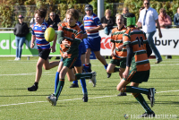 RC Waterland - Rotterdamse RC (Cubs Bowl Poule A, 1e fase)