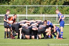 Junioren Shield poule C, 1e fase: RC Waterland/CAS - RC The Bassets