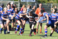 Junioren Shield poule C, 1e fase: RC Waterland/CAS - RC The Bassets