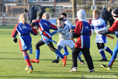 Turven: RC Waterland - AAC Rugby